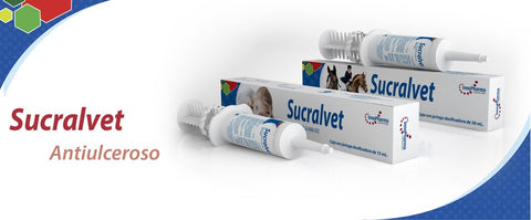 Sucralvet Pasta oral 15 ml