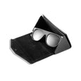 The Goods Sunglasses with Case