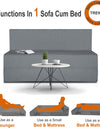Adorn India Easy Treno 2 Seater Sofa Cum Bed Sit & Sleep Perfect for Guest, Colour Grey, 4'x6'