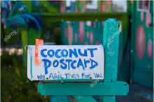 Load image into Gallery viewer, Coconut Postcard
