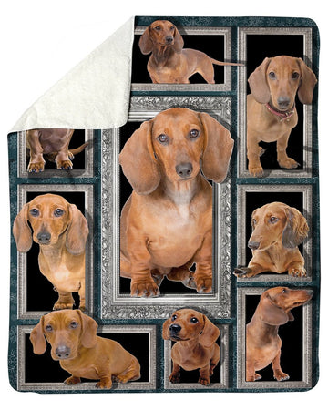 Vintage Dachshund Special  Custom Design For Dog Lovers Sherpa Blanket