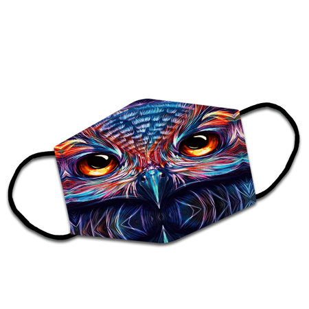 Colorful Majestic Face Owl Staring At You Reusable Face Mask/Washable Cloth Mask