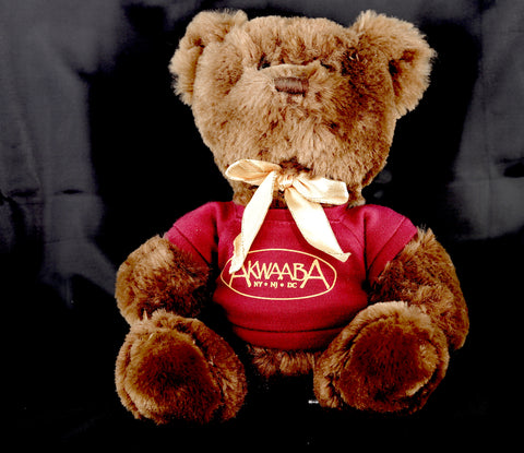 Akwaaba Teddy Bear In A T-shirt