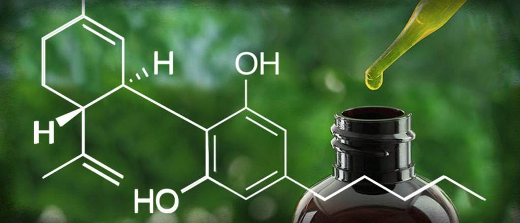 Health - The Benefits of Cannabidiol