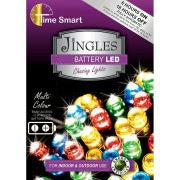 Battery LED Lights Multicolour 20 Bulbs