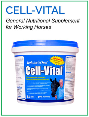 Kohnke's Own Cell Vital - Sovereign Equestrian