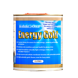 Kohnke's Own Energy Gold - Sovereign Equestrian