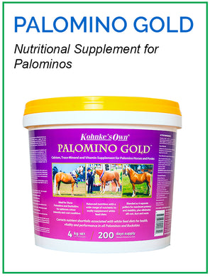 Kohnke's Own Palomino Gold - Sovereign Equestrian