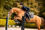Load image into Gallery viewer, PS of Sweden - Boots Jump - Front - Sovereign Equestrian