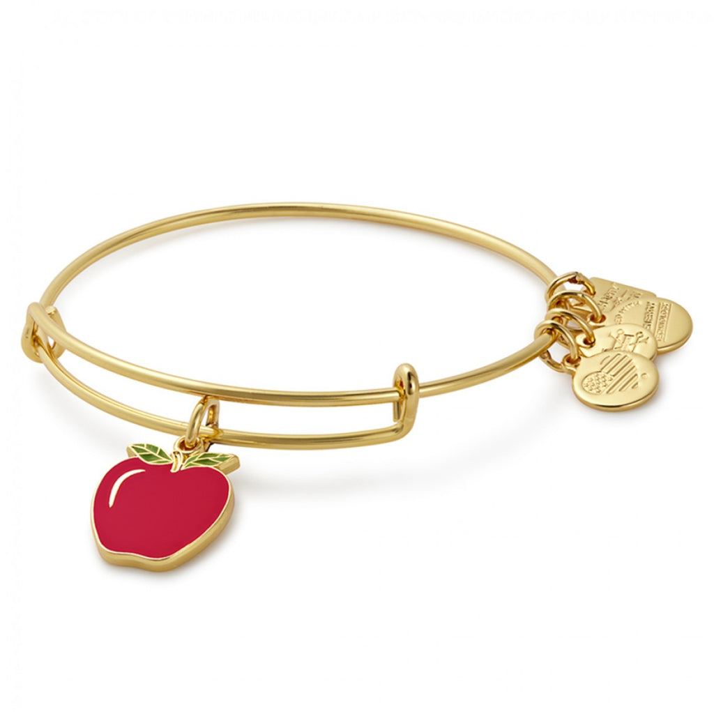 Alex & Ani Apple Charm Bangle