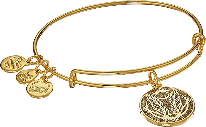 Alex & Ani Color Infusion Godspeed Charm Bangle