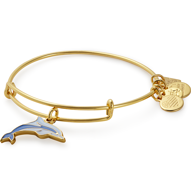 Alex & Ani Dolphin Charm Bangle