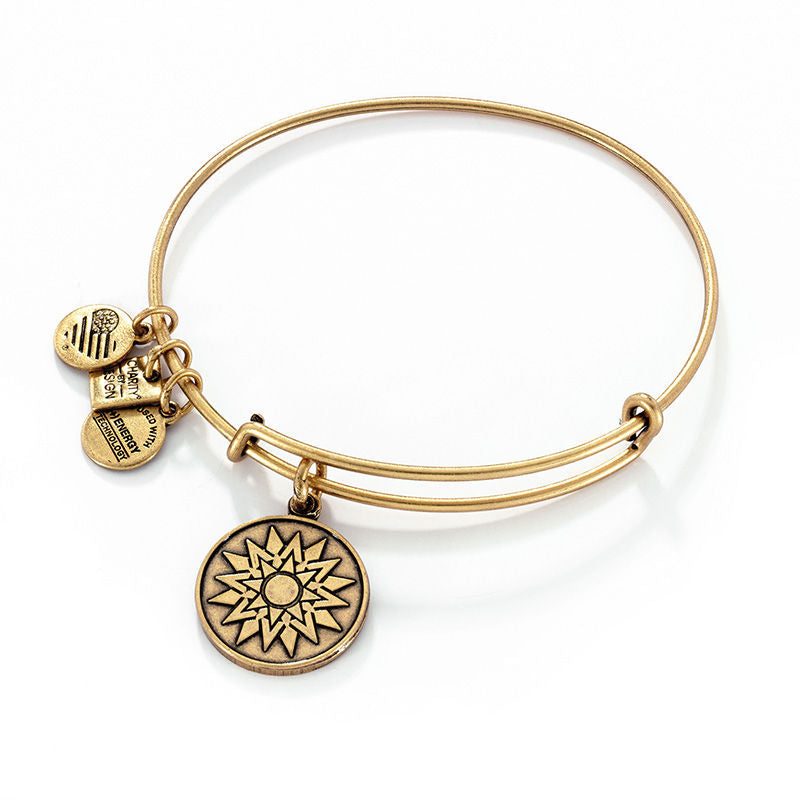 Alex & Ani New Beginnings Charm Bangle