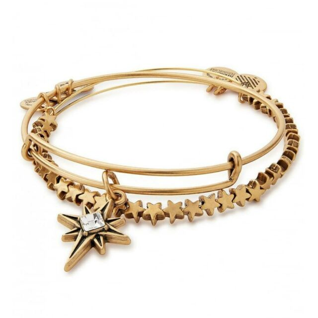 Alex & Ani North Start Charm Bangle Set