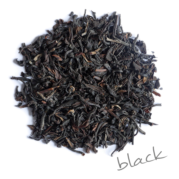 DARJEELING FIRST FLUSH TEA