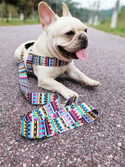 Doggy Stuff Shop Colorful No-Pull Pet dog Harness