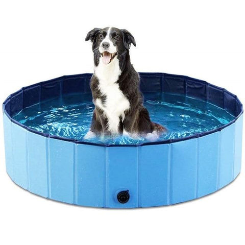 Dog Foldable Water Pool Blue