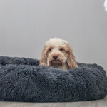 Calming Dog Bed