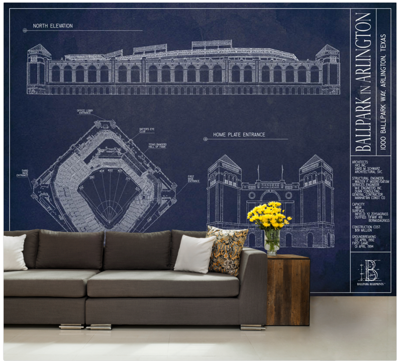 Ballpark in Arlington Wall Mural