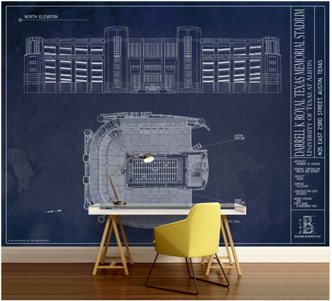 Death Valley - Clemson University Wall Mural