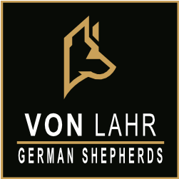 Von Lahr German Shepherds
