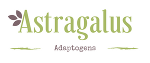 Adaptogens: Coping with Stress using Astragalus