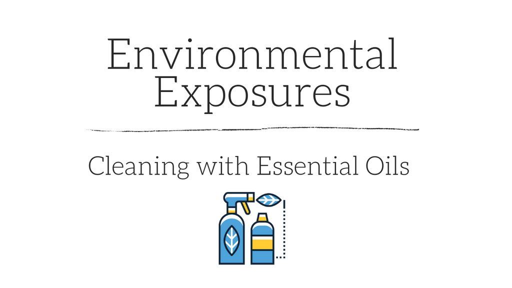 Assessing Environmental Exposures