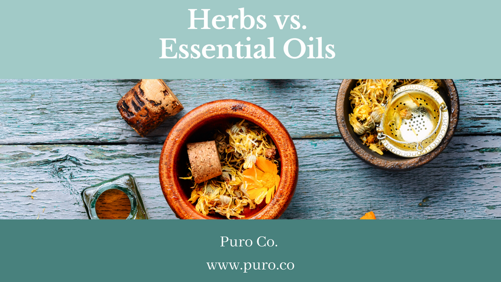 Herbs vs. Essential Oils