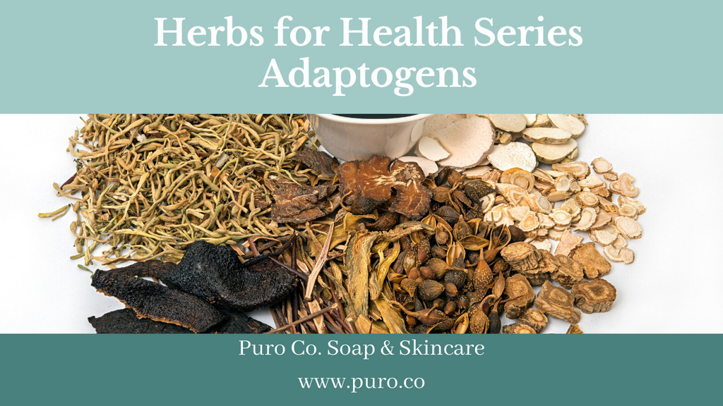 Herbs for Health Series: Adaptogens
