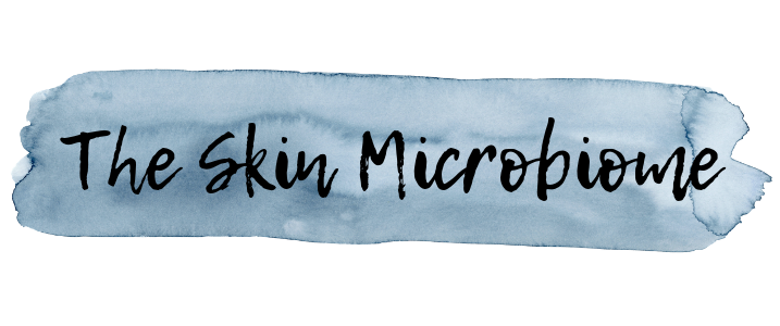 Skin Microbiome - Why we want bacteria on our skin!