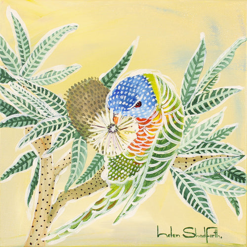 Banksia and Lorikeet ***SOLD