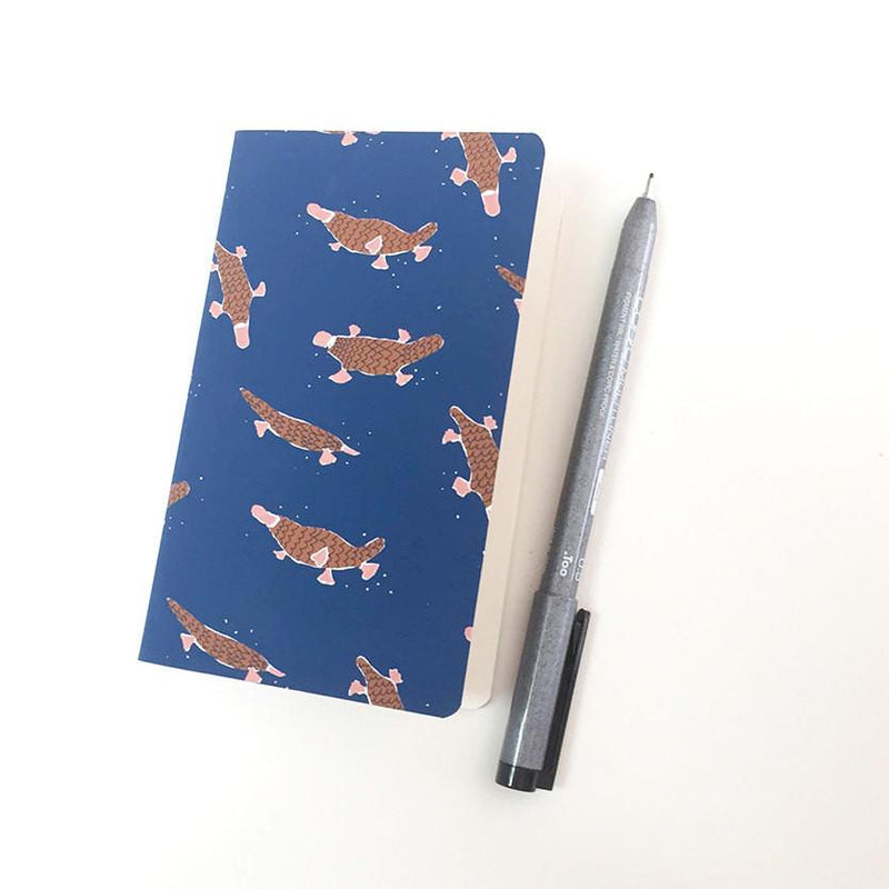 Platypus Pools Journal