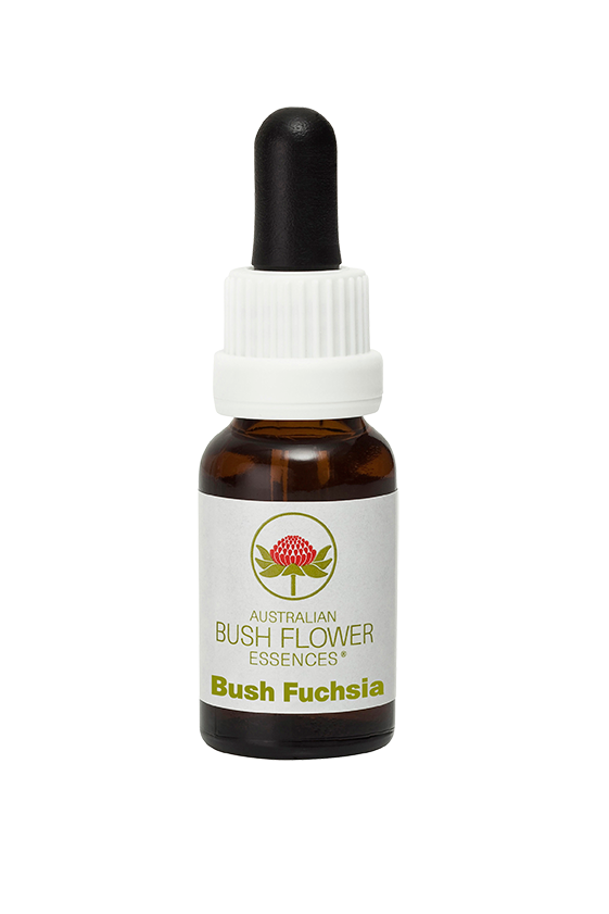 products/Bush_Fuchsia.png