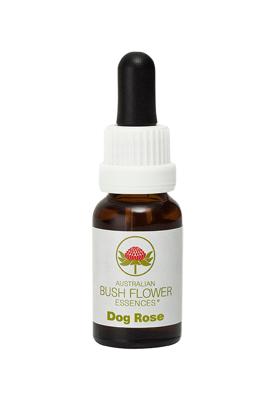 products/Dog_Rose.png