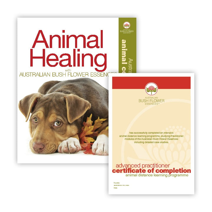 products/animal_healing_course.jpg
