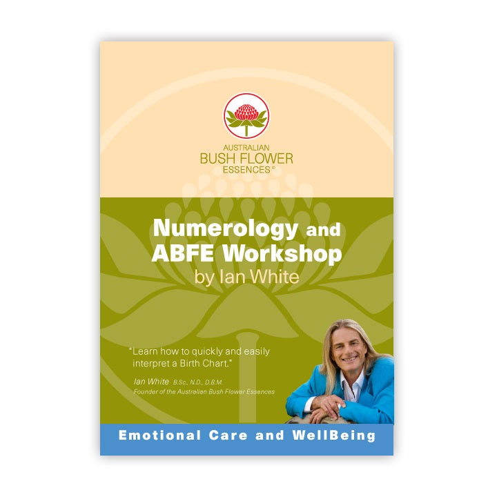 products/numerology_workshop.jpg