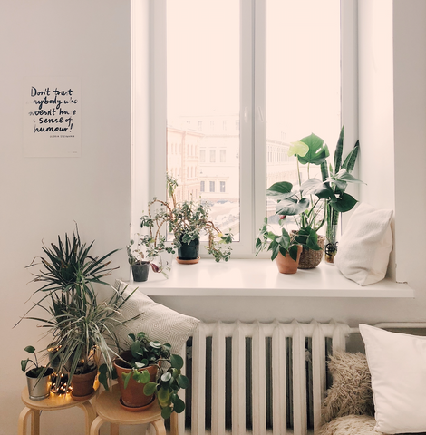 airy room wellbeing