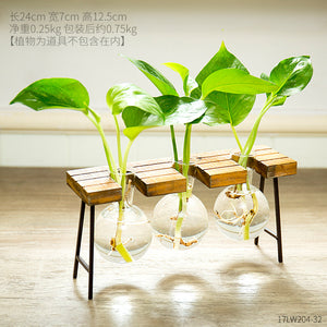 Small Transparent Glass Wooden Frame Vase