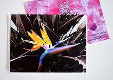 Load image into Gallery viewer, Purple Bird of Paradise Greeting Card