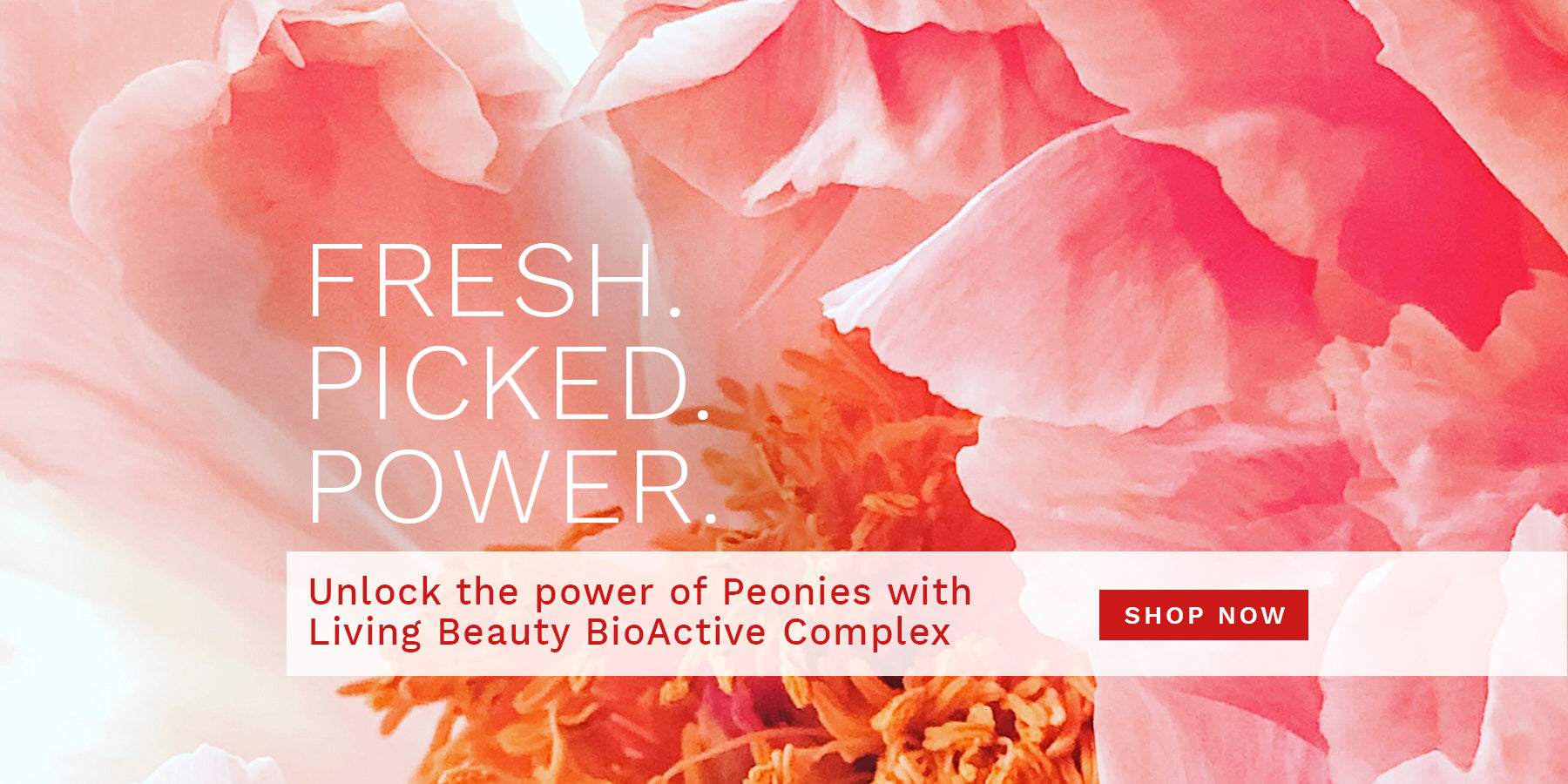 FRESH. PICKED. POWER. Unlock the power of Peonies with  Living Beauty Bio Active Complex: SHOP NOW