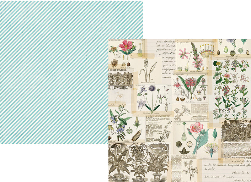 Simple Vintage Botanicals 12x12 Paper - Beautiful Day