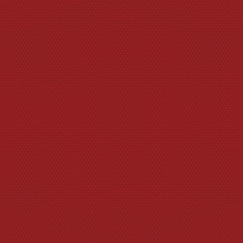 Color Vibe 12x12 Textured Cardstock - Cranberry