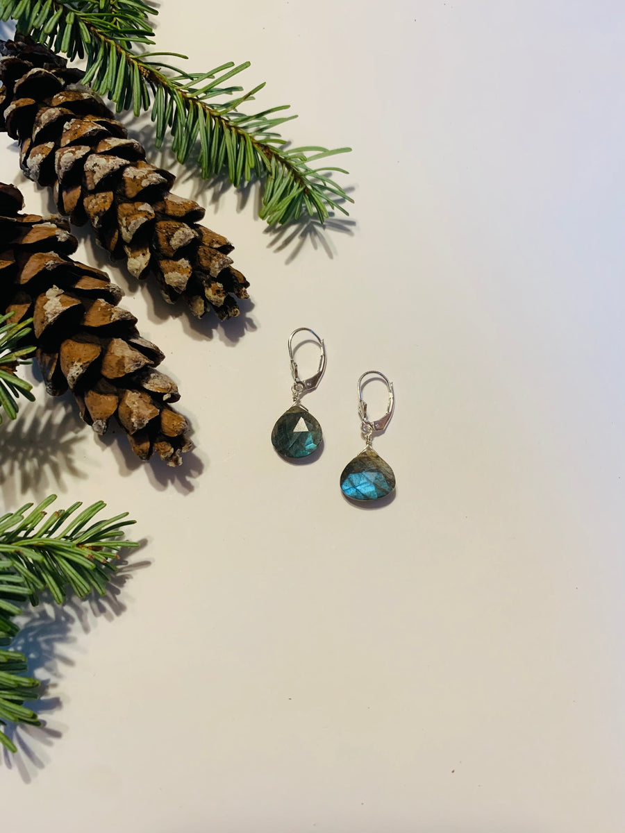 Dainty Drop Labradorite Earrings