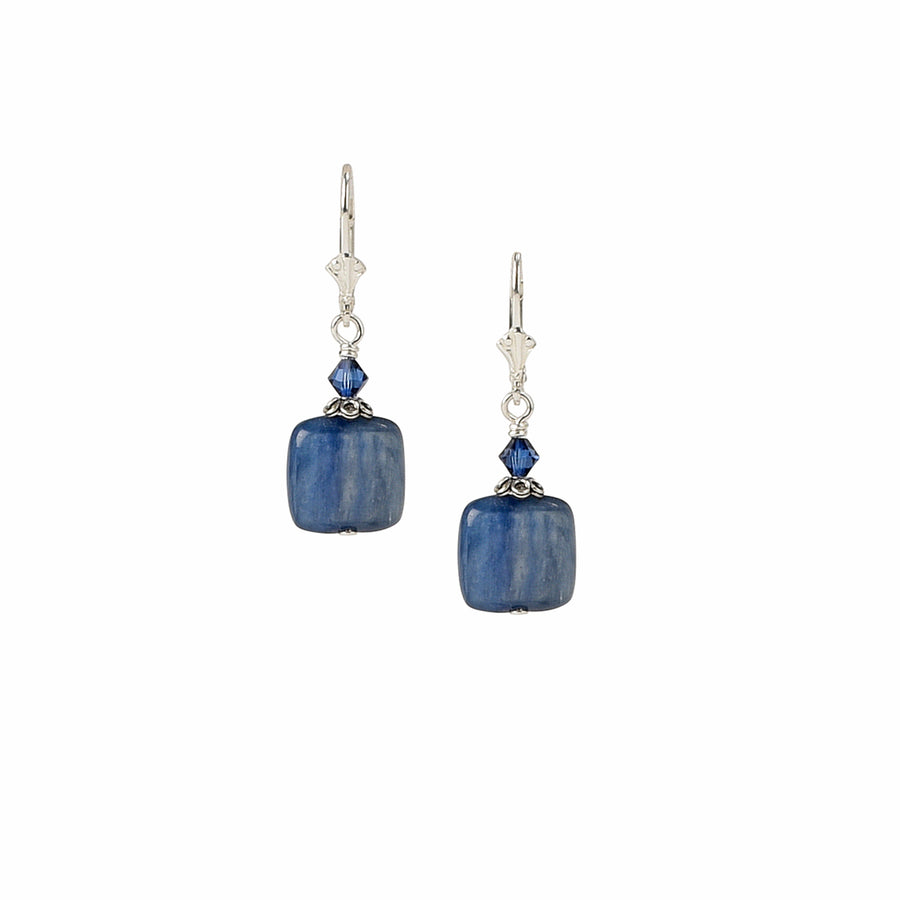 Knotty But Nice Kyanite Earrings - Trezana