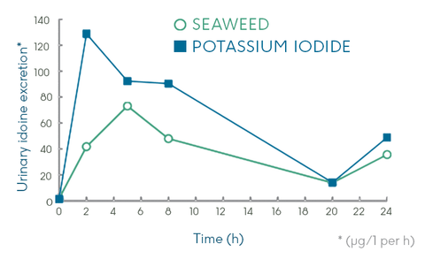 iodine release in seaweed graph
