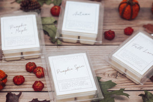 Isaiah 40:8 Fall Collection - Fall Love (wax melts)