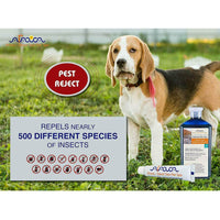 Arava Natural Flea & Tick Drops & Shampoo Bundle for Dogs (2 Variations)