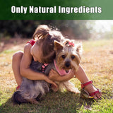 Arava Ear Wipes for Dogs and Cats image 4