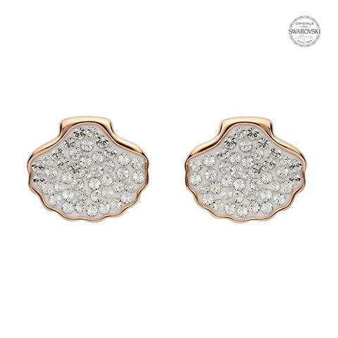 White Shell Stud Earrings