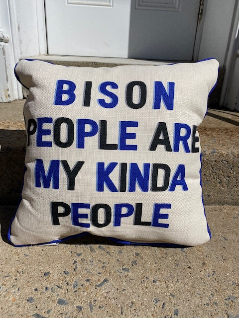 Bedford County School Pillows
